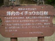 2008040530